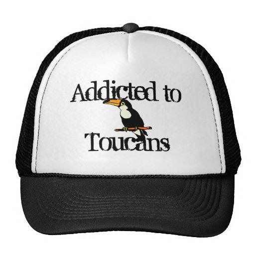 Toucans Mesh Hat