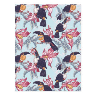 Toucans With Exotic Flowers Postcard