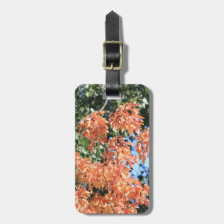 Touch of Fall Luggage Tag