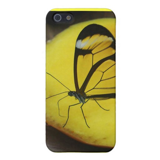 TOUCH OF LEMON iPhone 5 COVER