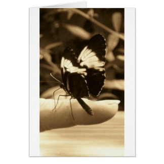 Touch of Nature - Butterfly Card