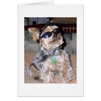 Tough Dog Greeting Card