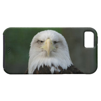 Tough Looking American Bald Eagle iPhone 5 Case
