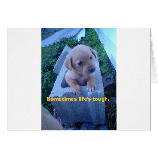 tough times: puppy card