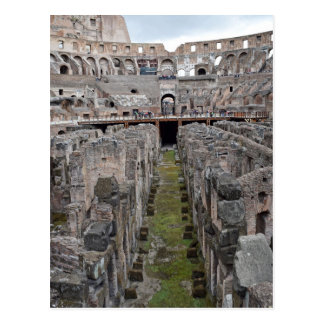 Tour of the Roman Colosseo Postcard