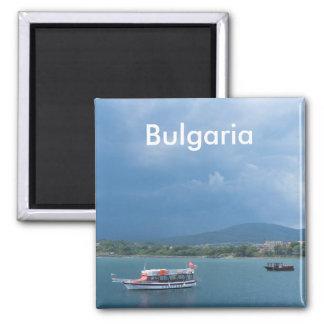 Tourist boat magnet