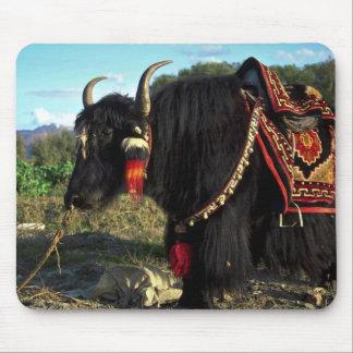 Tourist yak, Tibet Mouse Pad