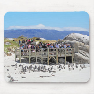 Tourists at Boulders Beach looking at penguins Mousepads