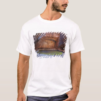 Tourists at Cathedral Gorge, Bungle Bungles T-Shirt