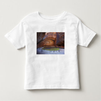 Tourists at Cathedral Gorge, Bungle Bungles Toddler T-Shirt