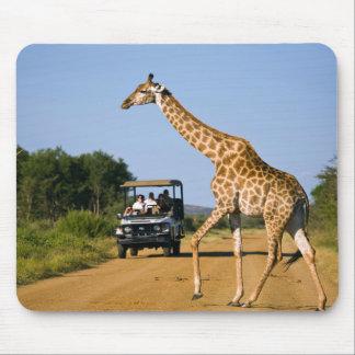 Tourists Watching Giraffe Mouse Mat