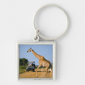 Tourists Watching Giraffe Silver-Colored Square Key Ring