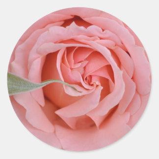 Tournament of roses round sticker