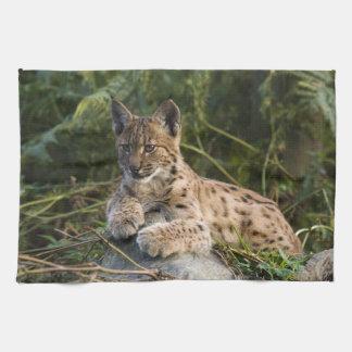 Towel - lynx