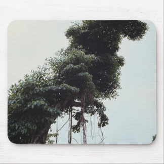 Towering tree and vines in jungle mouse mat