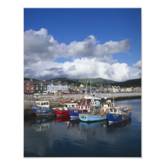 Town and Harbour, Dingle, County Kerry, Photo Print