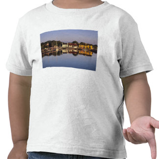 Town and harbour, Kinvarra, County Galway, Shirt