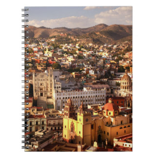 Town View From Above Notebooks