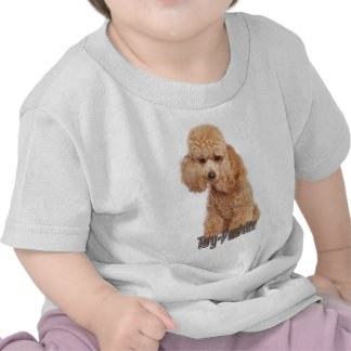 toy poodle breeds tee shirts