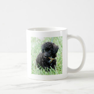 Toy Poodle Puppy Coffee Mug