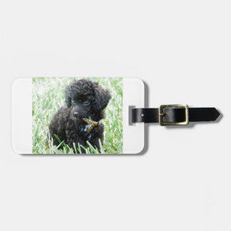 Toy Poodle Puppy Luggage Tag