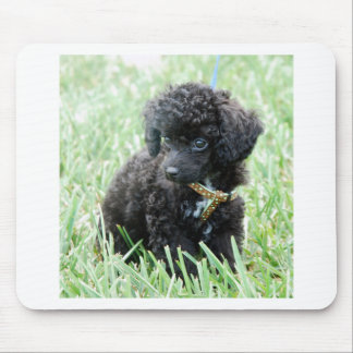 Toy Poodle Puppy Mouse Pads