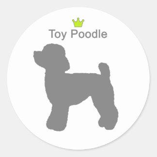 ToyPoodle g5