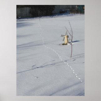 Tracks in Snow ~ print