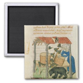 Tractatus de Herbis' Square Magnet