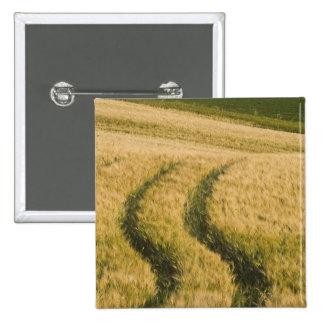 Tractors tracks through wheat, Tuscany, Italy 15 Cm Square Badge