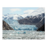 Tracy Arm Fjord Postcard