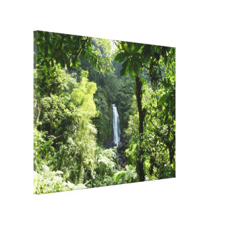 Trafalgar Falls Tropical Rainforest Photography Canvas Print