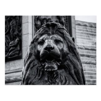 Trafalgar Square Bronze Lion postcard Post Cards