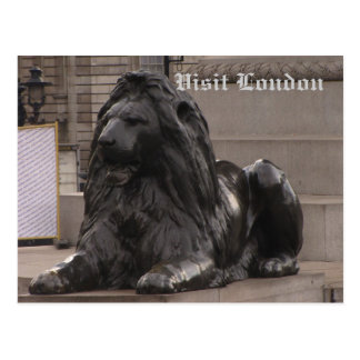 Trafalgar Square Lion Postcard