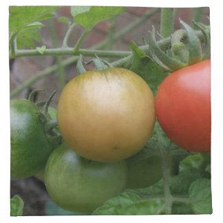 Traffic Light Tomatoes Napkin
