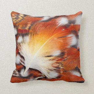 Tragopan Feather Still Life Cushion