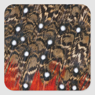Tragopan Feathers Abstract Square Sticker