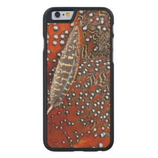 Tragopan feathers close-up carved maple iPhone 6 case
