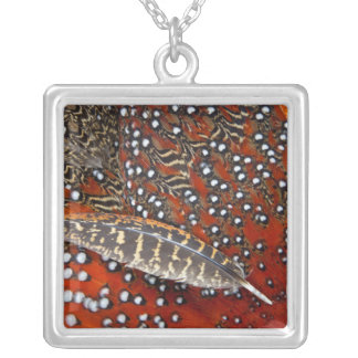 Tragopan feathers close-up silver plated necklace