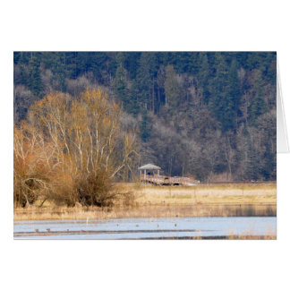 Trail at Nisqually National Wildlife Refuge Greeting Card