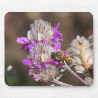 Trailing Indigo Bush with a Bee Mouse Pad