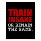 Train Insane or Remain the Same Poster
