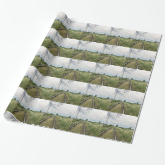 train rails wrapping paper