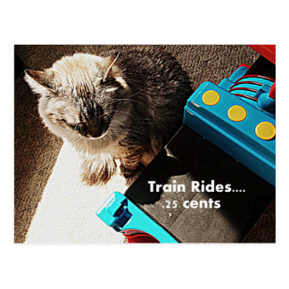 Train rides Cat Postcard