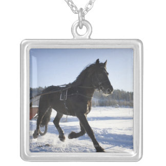 Training of horses in a wintry landscape, silver plated necklace