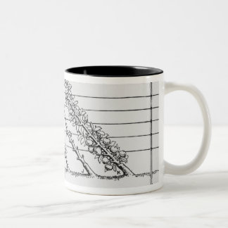 Training young trees, from 'The Fruit Grower's Gui Two-Tone Coffee Mug