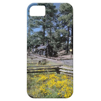 Trains and tracks - redundant steam train iPhone 5 case