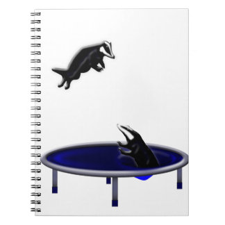 trampolining badgers notebooks