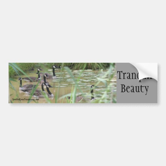 Tranquil Beauty Inspirational Bumper Sticker