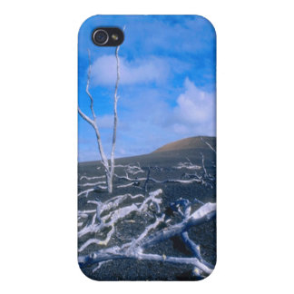 Tranquil Desert iPhone 4 Cover